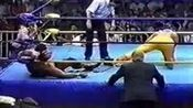 wwe美国职业摔角武林风WWE魔蝎大帝斯汀VS维德-0004