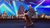 英国达人秀:狗狗表演舞台剧,简直像拍电影一样,全场起立欢呼!