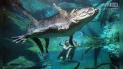 澳大利亚美女与五米巨鳄水下共舞-娱乐头条I-疯哥娱乐