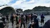 【台湾】南方澳大桥崩塌现场:车翻桥垮船压沉-朱雀资讯-朱雀传媒