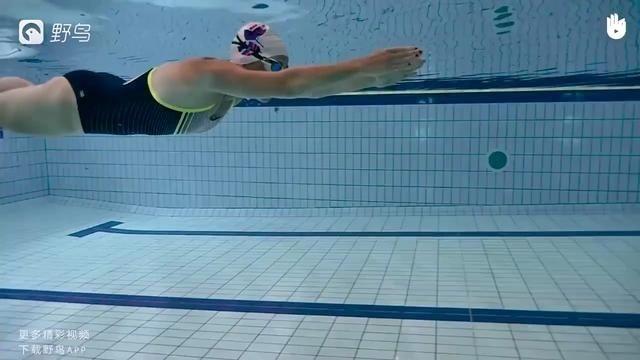 高清游泳教程(蛙泳)