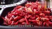 德国小龙虾泛滥成灾 当地群众哭诉 吃都吃不完呀