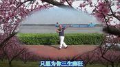 幕燕云谷健身舞《三生三世十里桃花》之三生三世(正面演示)