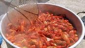 美国小龙虾泛滥, 如今终于被卖到中国, 价格让很多人难以接受