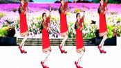 夕陽美广场舞《欢歌起舞》
