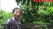 爱剪辑-南健穆怀斌油桃.mp4