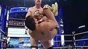 wwe美国职业摔角最新赛事WWE2014Sheamus好。hd