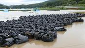 日本福岛又出事?数千袋核废料随意摆路边,结果都被洪水冲走?
