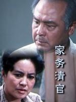 家务清官(剧情片)