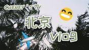 北京vlog|日均2w步的暴走旅游之路|北海公园划船|故宫长城颐和园圆明园游记