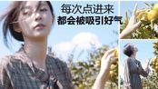 Vlog X 金宝拉┃济州岛篇┃女神级模特+男友力的剪辑旅拍