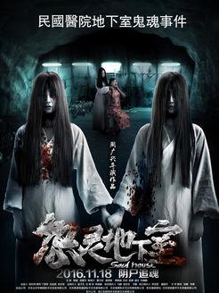 怨灵地下室(恐怖片)