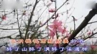 三月桃花雨(演唱:童丽)