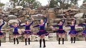 《欢歌起舞》 简单广场舞教学 广场舞视频