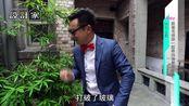 【設計家352合集】【特別企畫】跟著名偵探一起尋找海棠花玻璃!!