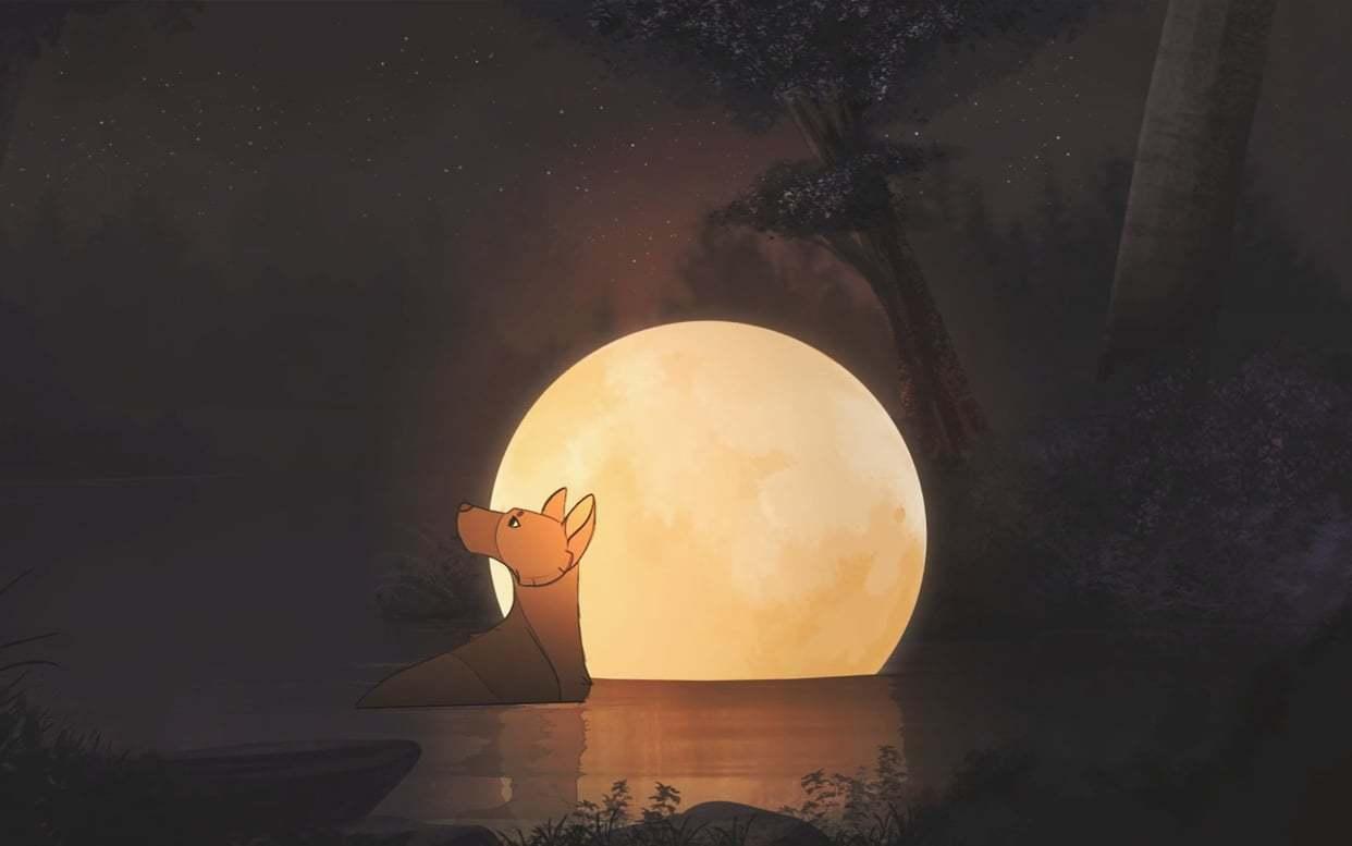 推着月亮行走的狼