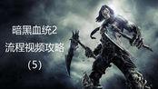 THQ游戏回顾之暗黑血统2:视频流程攻略5 手残玩家玩动作游戏