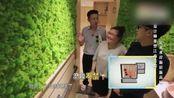 视频:卫生间居然还可以这样设计,宛如走进森林