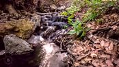 美国石峰国家公园视频
