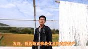 青海大通县返乡创业大学生:想搭建一个有情怀的高原特色众享平台