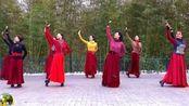 广场舞:紫竹院《草原情》,正月十三,视频欣赏四