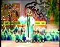 《春节戏曲晚会大全》之2000年08