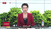 春节档票房58.4亿同比小幅增长 《流浪地球》逆袭夺冠