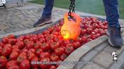 西红柿填满游泳池,放入烧红的铁壶会发生什么?太解压了!