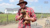 Farmer Steve  Alx James|Alx James-搞笑 热点直击