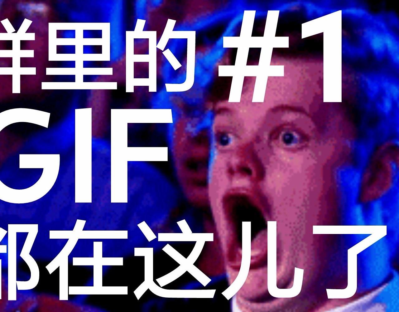 群里的GIF都在这儿了#1