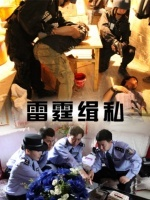 雷霆缉私(剧情片)